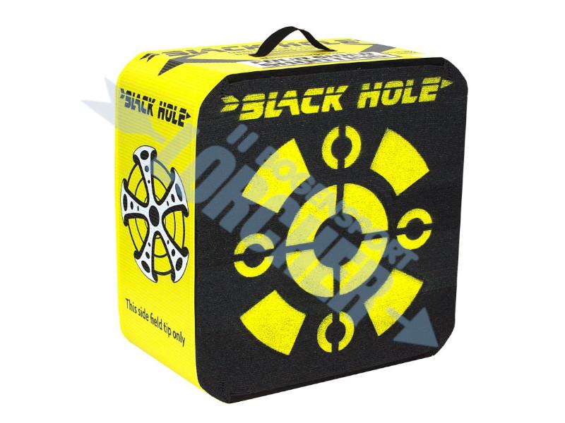 Fieldlogic Targets Black Hole